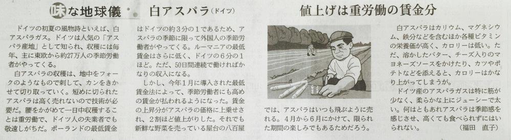 ∗∗∗白アスパラガス はドイツの風物誌です・日経新聞の記事・Weißer Spargel (1/2)