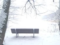 Bank im Winter