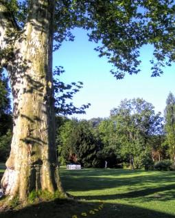 ディスカウ城と公園