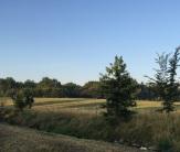 ディスカウ公園の辺りの景色、ライデ川のそばにあら草原