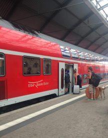 DBドイツ鉄道、ハレ(ザーレ)中央駅