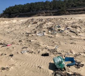 Landfill or sandy Beach
