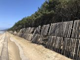 Windbreak fence Koga shore 2017